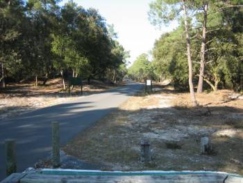Route des Plages Hourtin - Carcans