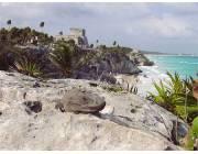 Piste cyclable Cancun - Tulum