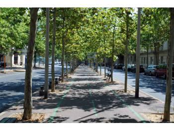 Piste cyclable de l'avenue Jacques Cartier à Montpellier
