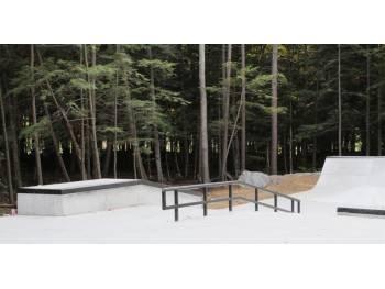 Skatepark de Fontainebleau Park à Montréal