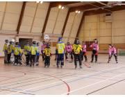 Cosec 1 du complexe sportif Henri Terré à Troyes (photo : Troyes Roller)